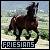 Friesians