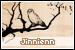Jinnienn: A Love Letter