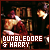 Dumbledore & Harry