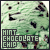 Mint-Choc Chip Ice-cream